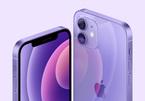 Vì sao kế hoạch bán iPhone của LG vấp phải sự phản ứng dữ dội?