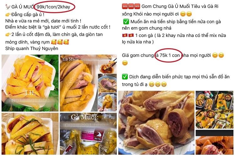 Đặc sản quá ế, bán làm thức ăn gia súc, ngư dân Quảng Bình khóc ròng