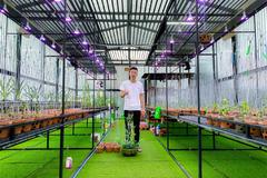 Vườn lan quý 1.000 m2 của ông chủ trẻ ở Đắk Nông