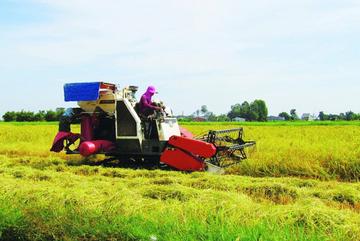 Ứng dụng CNTT nâng tầm giá trị nông nghiệp Tây Ninh