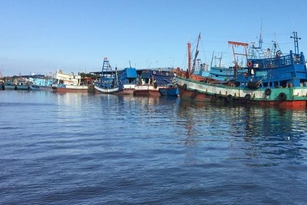 Triển khai Nghị quyết Đại hội Đảng: Phú Yên đặt trọng tâm phát triển kinh tế biển, gắn với ứng dụng mạnh mẽ tiến bộ KHCN