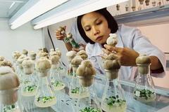 Thư Bộ trưởng Lê Minh Hoan gửi các nhà khoa học nông nghiệp