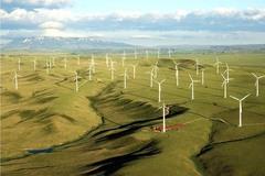 Bổ sung 14 dự án điện gió tại Gia Lai vào quy hoạch