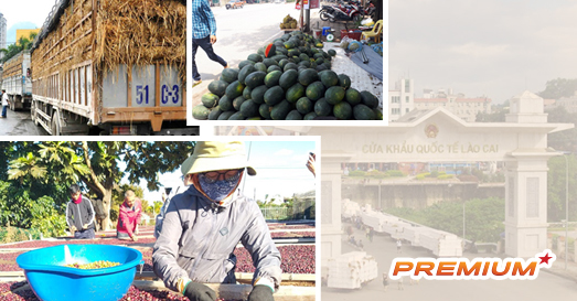 Buôn bán với Trung Quốc: Khắc phục điểm yếu kinh niên