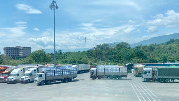 Xuất nhập khẩu hàng hóa qua cửa khẩu Lào Cai tăng mạnh nửa đầu năm 2021