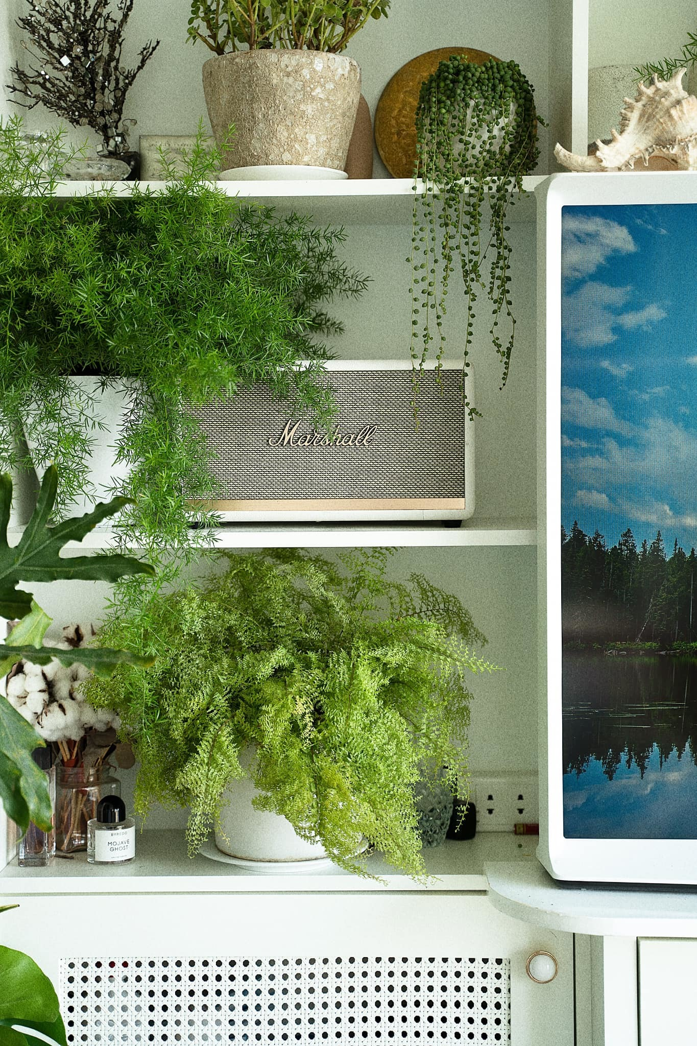 Đê mê trước căn hộ xanh, view sông Hồng mộng mơ của nữ họa sĩ
