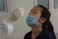 Vietnam records another 356 domestic COVID-19 cases