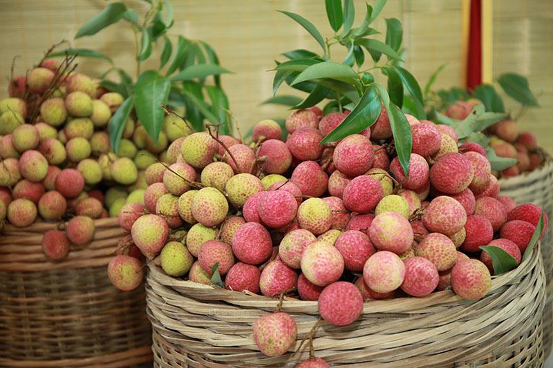 Đạt chuẩn xuất khẩu, hàng Việt rộng cửa ra thị trường quốc tế