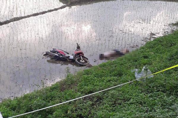 Thi thể nam thanh niên bên xe máy dưới ruộng lúa ở Hà Nội