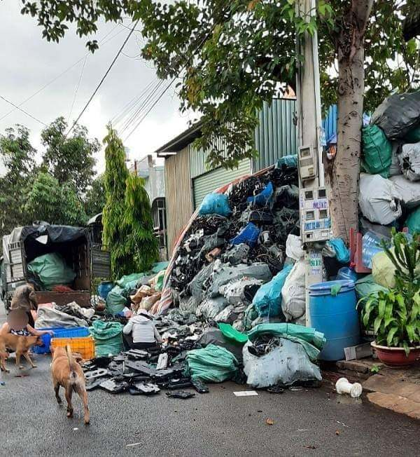 Khổ sở vì hàng xóm thu gom phế liệu bốc mùi hôi nồng nặc