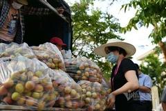 Chung tay giúp Bắc Giang sớm tháo gỡ khó khăn trong việc tiêu thụ nông sản