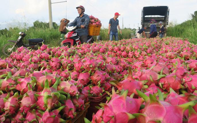 vietnam agriculture