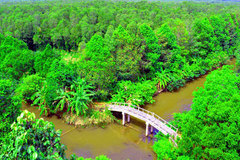 Mekong Delta's unique nature reserve to be opened for visitors' exploration