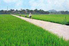 Hòa Bình phấn đấu có thêm 5 xã được công nhận đạt chuẩn nông thôn mới trong năm 2020
