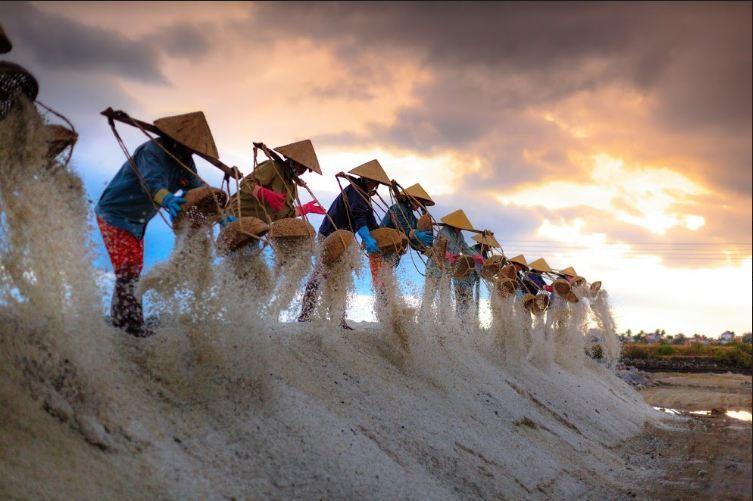 travel trend,Ca Na Salt Field,Mui Dinh Beach