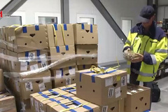 Nhãn lồng Sơn La bán tại châu Âu giá gần 500.000 đồng/kg