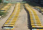 Không có nguồn thu, hàng loạt doanh nghiệp vận tải ở Đà Nẵng điêu đứng