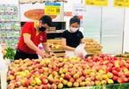 Bộ trưởng Nguyễn Hồng Diên: Nếu không có biện pháp kịp thời thì rất gay go