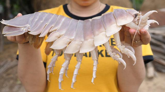 Hình dáng đáng sợ, xấu xí, loài sinh vật biển này lại được săn đón vì ngon hơn cả tôm hùm