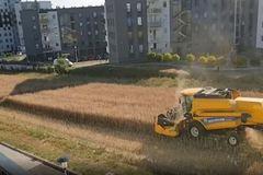 Mảnh ruộng lọt thỏm giữa chung cư, ông nông dân quyết giữ không bán lại