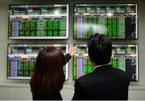 VN stock market hits record, big names rise