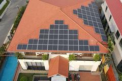 Việt Nam có tiềm năng trở thành quốc gia tiên phong trong khu vực về phục hồi xanh, toàn diện