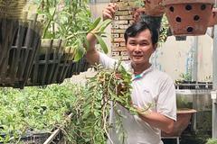 Kinh nghiệm chăm lan của ông chủ vườn hàng nghìn mét vuông
