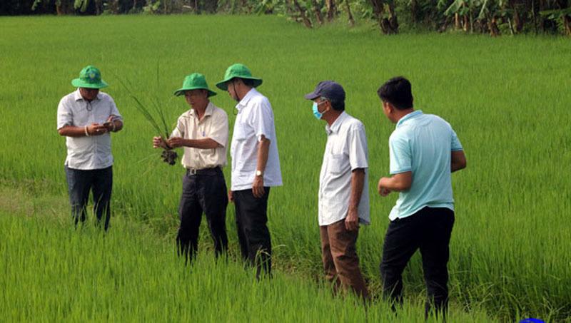 Gò Công Tây tổ chức hơn 400 cuộc tuyên truyền, vận động người Việt dùng hàng Việt