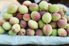 Những điều cần tránh khi ăn quả đào để không rước độc vào thân