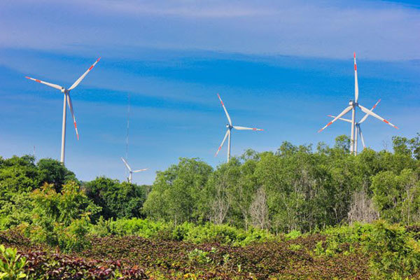 Cutting emissions: Navigating conflicting interests