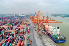 Tổng công ty Hàng hải Việt Nam vận chuyển miễn phí hàng hóa chống dịch Covid-19