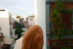 Địa phương đầu tiên có văn bản nêu rõ bánh mỳ là thực phẩm