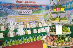 Hậu Giang có 66 sản phẩm OCOP đạt 3-4 sao