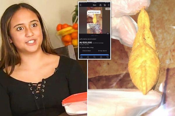 Cô bé 13 tuổi kiếm hàng trăm triệu nhờ bắt gặp miếng khoai tây chiên hiếm có