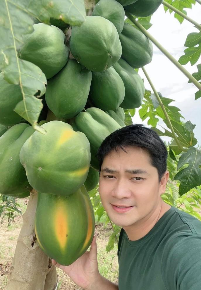 Minh Luân về quê chăm mảnh vườn 2.000 m2 trong mùa dịch