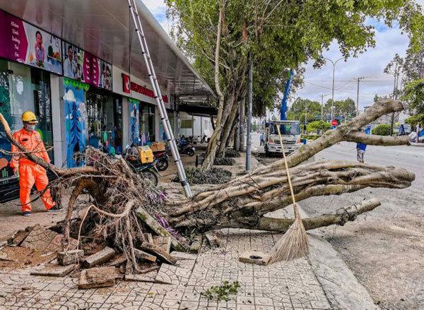 Mekong Delta,natural disasters