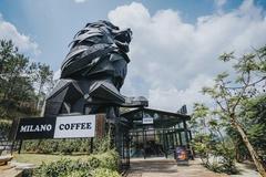 Trái ngọt 10 năm của Milano Coffee, 'ngựa ô' ngành cà phê Việt Nam