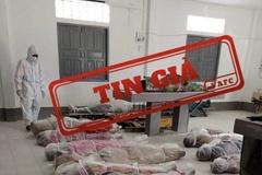 VAFC khẳng định, hình ảnh xác chết do Covid-19 lan truyền trên mạng là tin giả
