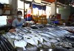 Tôm cá tăng giá nhưng chợ vắng khách mua