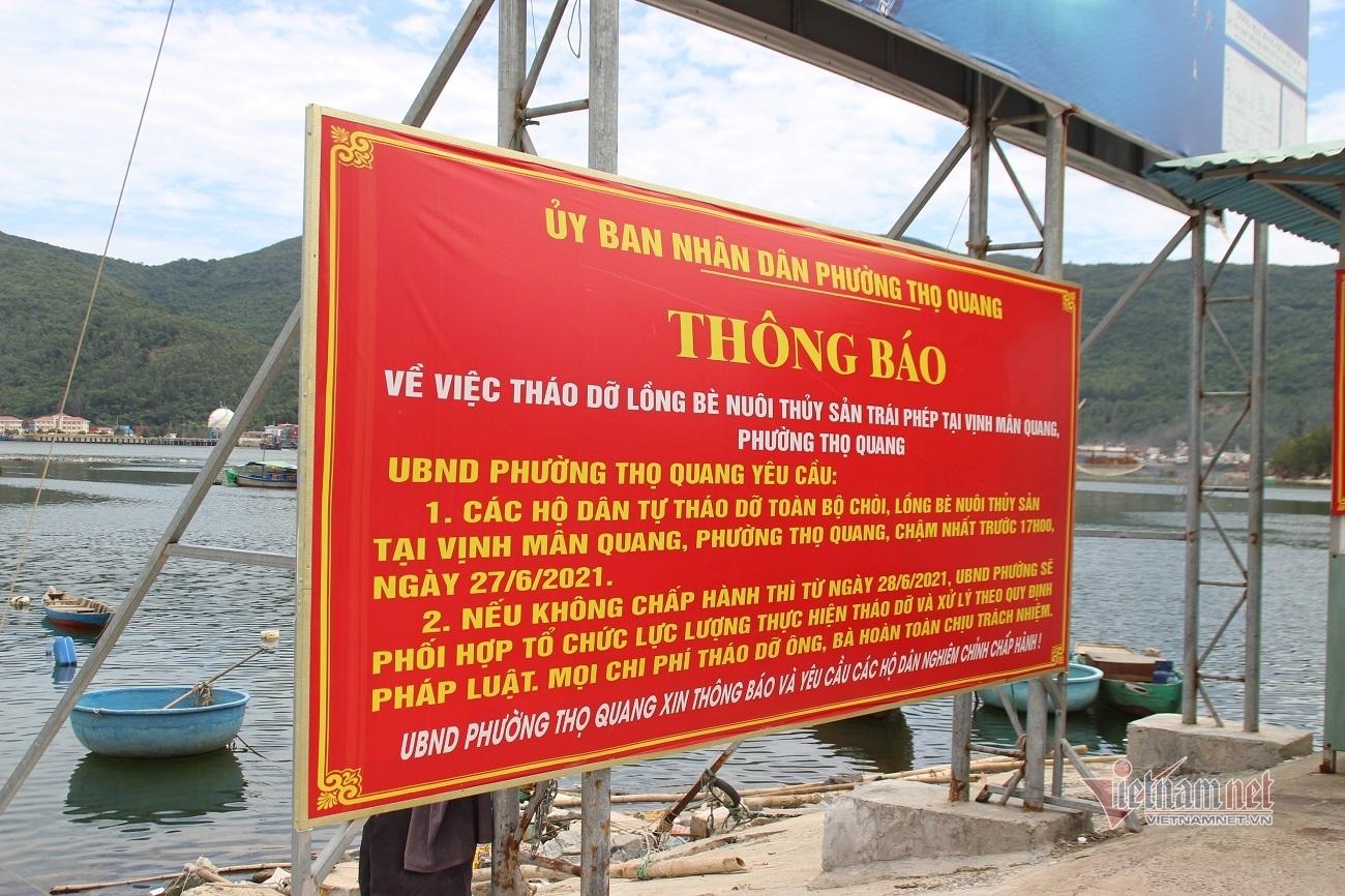 Làng cá bè tiền tỷ ở Đà Nẵng trước thời điểm di dời