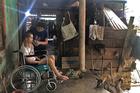 Hy vọng cuối cùng của gia đình nghèo có con trai hiếu thảo gặp tai nạn