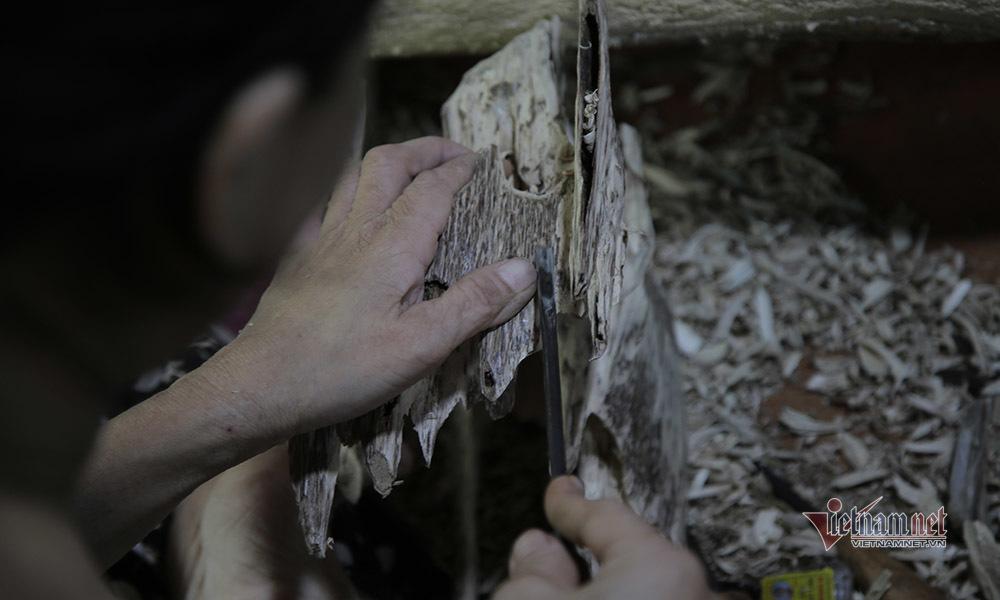 Đại gia miền sơn cước tiết lộ loại tinh dầu bán giá 1 tỷ đồng/lít