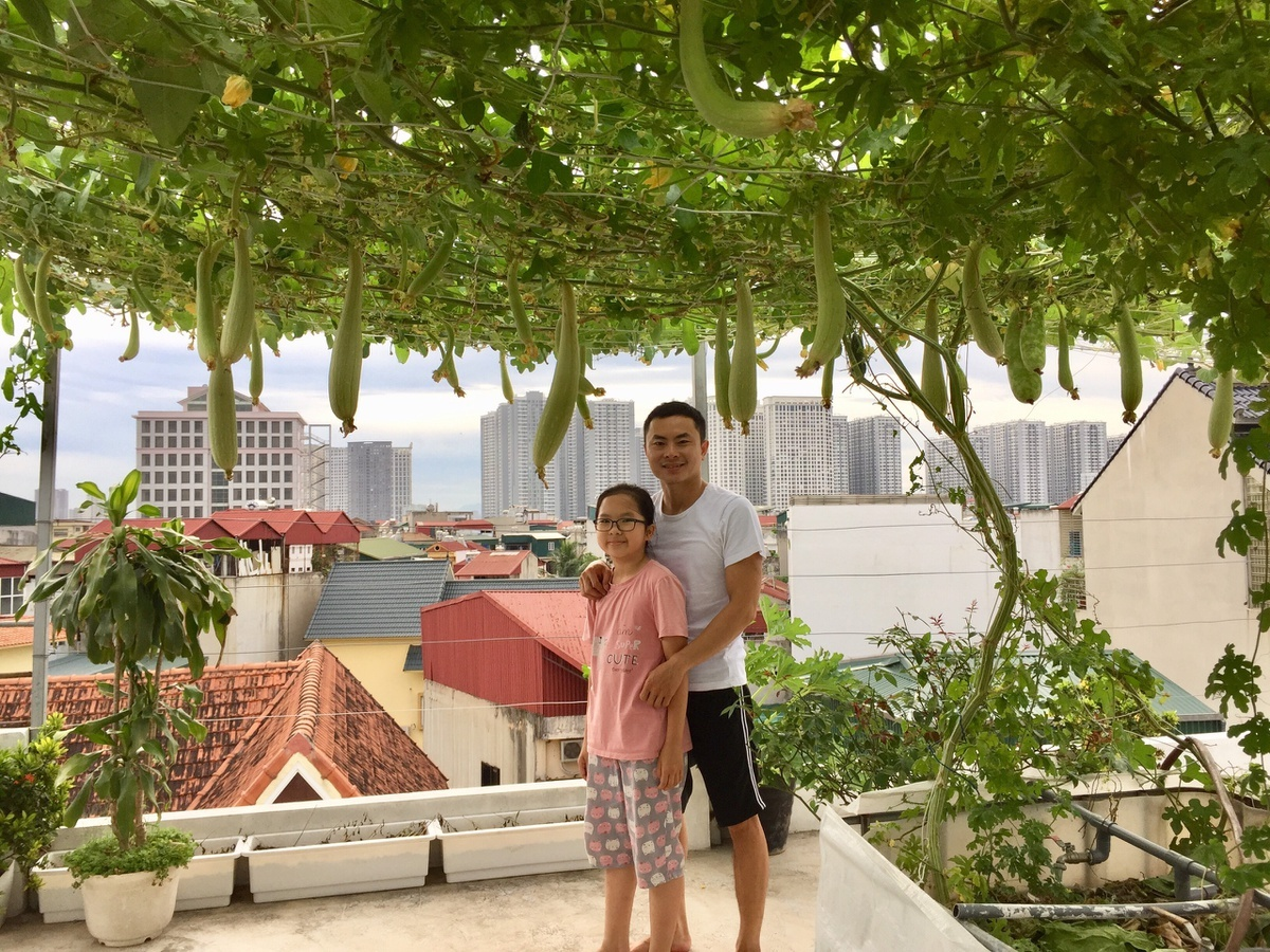 Ông bố câu cá, trồng rau trên sân thượng khi ở nhà tránh dịch