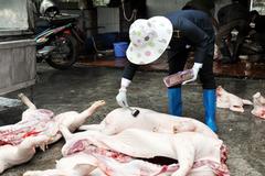 Quảng Ninh: Xây dựng các cơ sở giết mổ gia súc, tập trung để kiểm soát dịch bệnh cho đàn gia súc
