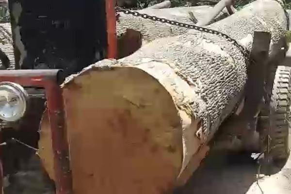 40 người cầm hung khí giải vây cho lâm tặc, cướp gỗ tang vật ở Đắk Lắk
