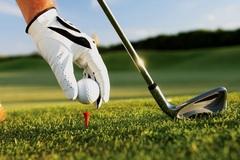Chơi golf giữa mùa dịch, Giám đốc Sở Du lịch Bình Định thành F1