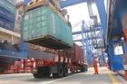 Giải quyết ùn tắc cảng Cát Lái: Đẩy mạnh thủ tục online
