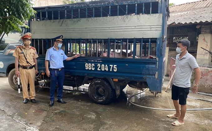 Bắc Giang xử phạt đối tượng vận chuyển động vật không có giấy kiểm dịch
