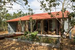 Gia đình Huế 'bỏ phố về quê', sống an yên trong nhà gỗ giữa vườn bưởi