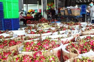 Vietnamese export goods do not carry SARS-CoV-2 virus: MoIT